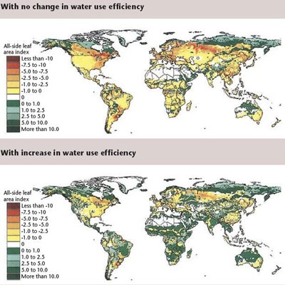 The effect of climate change on the world's vegetation